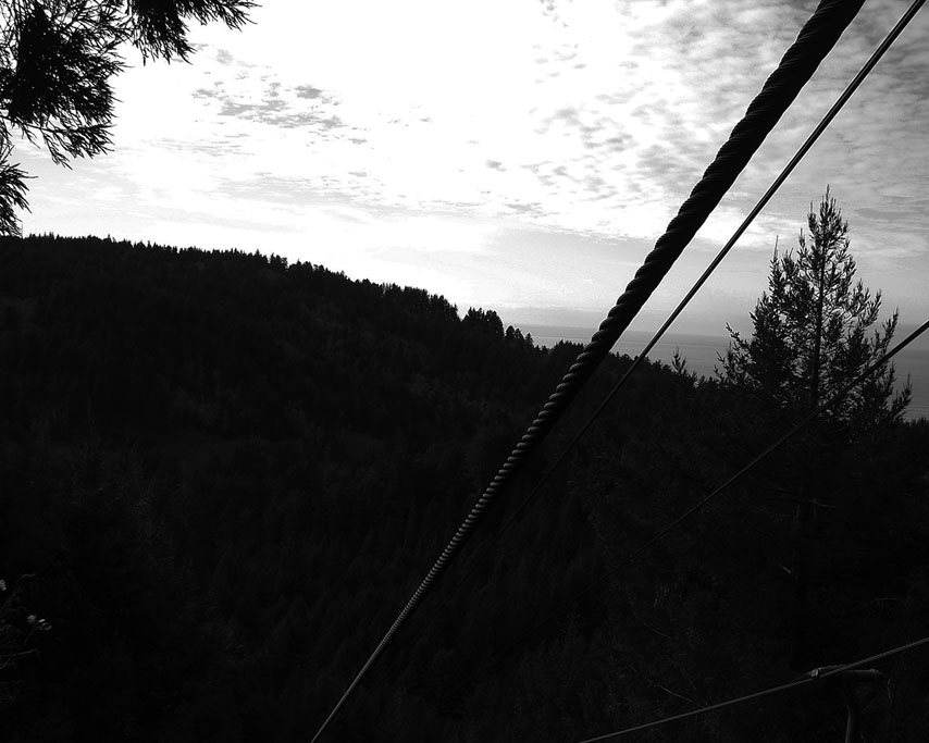 Trees of Mystery, Klamath, CA, Andrew D. Barron ©1/05/11