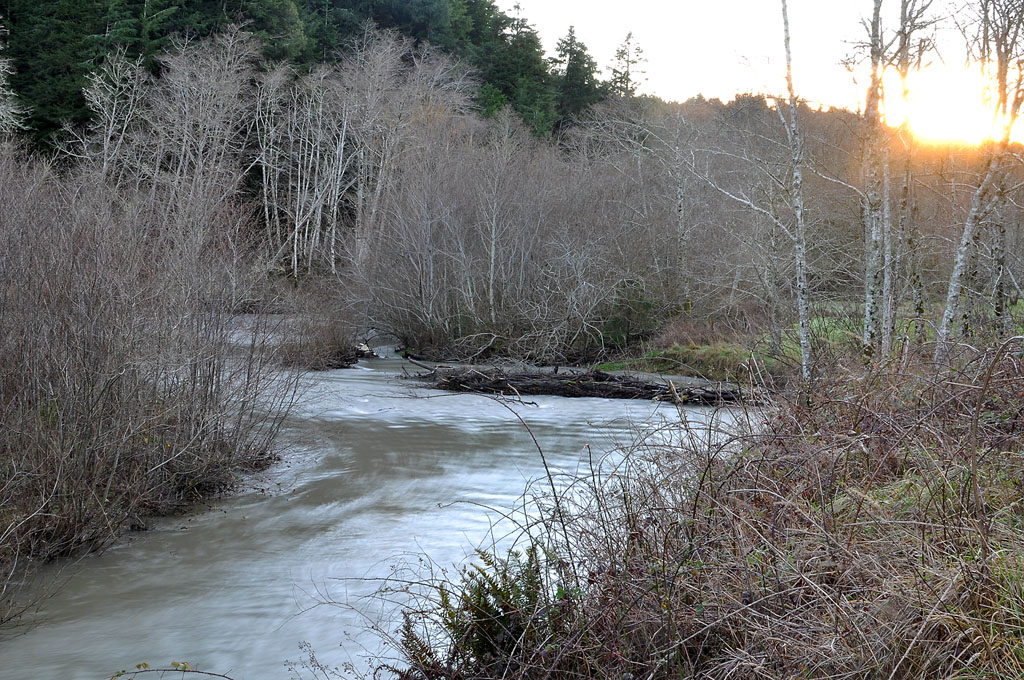 Euchre Creek, swollen, races to the sea. Andrew D. Barron ©1/19/11