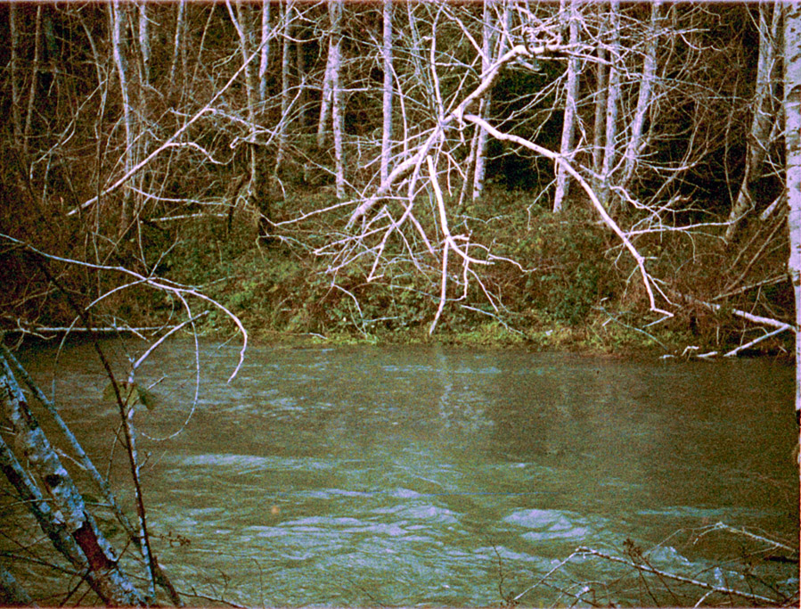 Euchre Creek, Curry County, OR, Minolta AutoPAK 440E 110, Andrew D. Barron©1/01/11