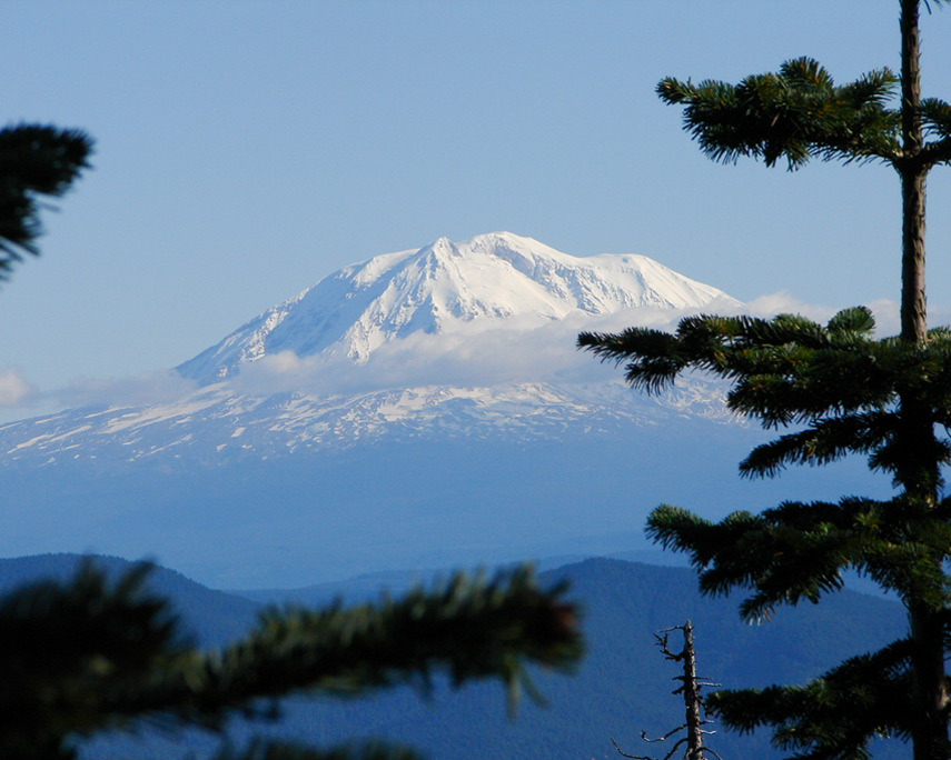 Mount Adams from Marble Mountain, Andrew D. Barron©10/25/11