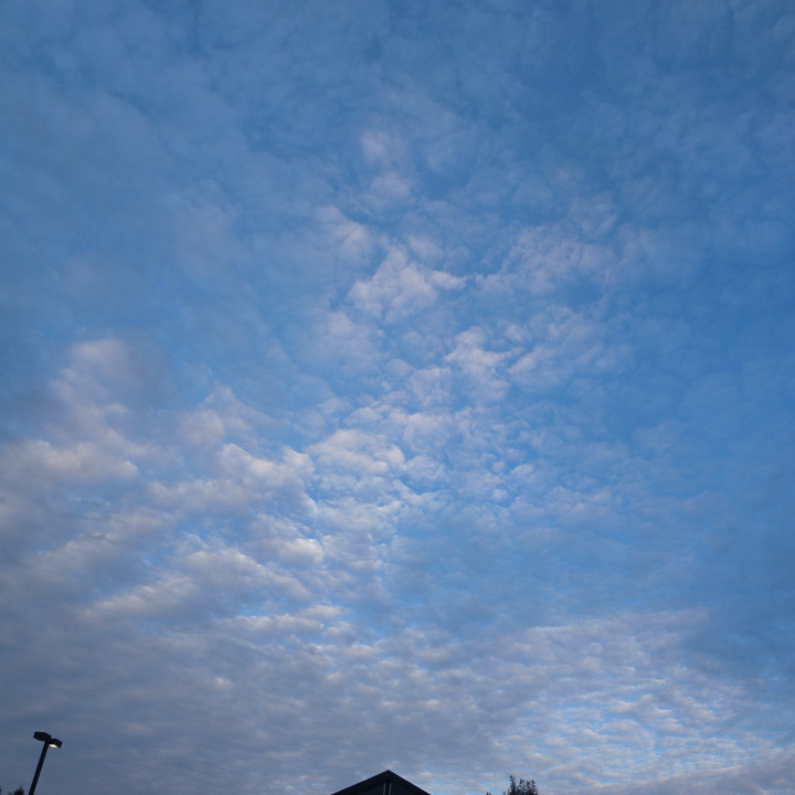 Vancouver Sky, Fisher, WA, Andrew D. Barron©10/12/11