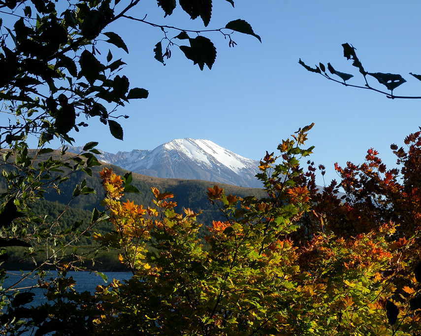 Mount St. Helens from Coldwater Lake, WA, Andrew D. Barron©10/18/11