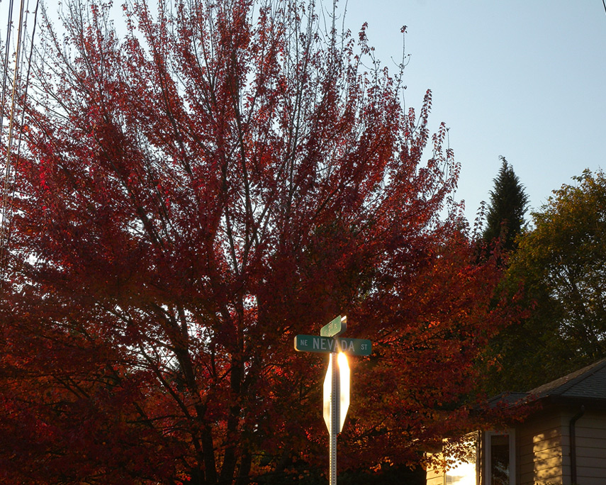 Nevada street, Camas, WA, Andrew D. Barron©10/27/11