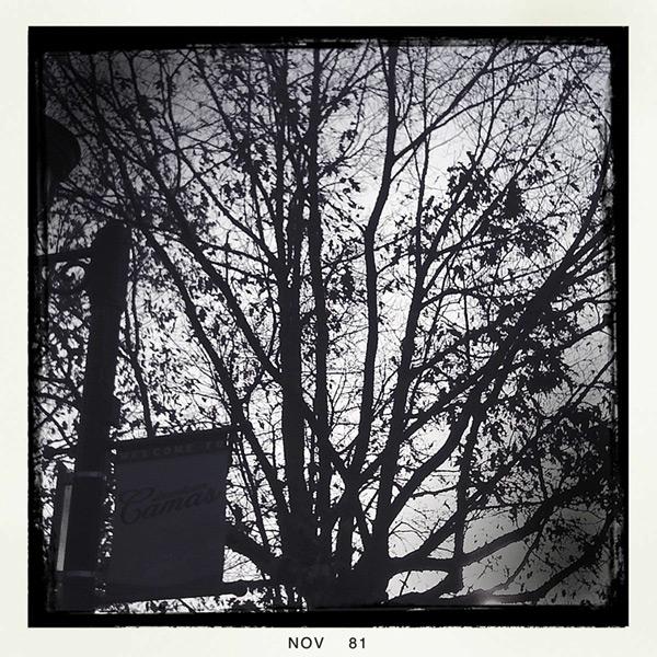 Andrew D. Barron©11/26/11