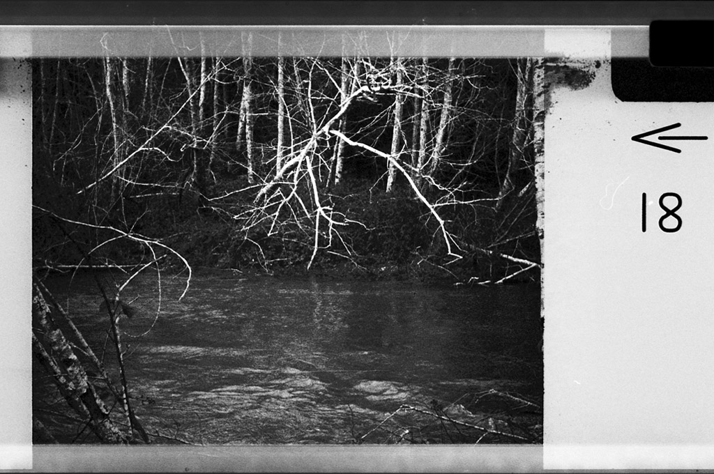 Euchre Creek, Curry County, OR, Andrew D. Barron©1/01/11