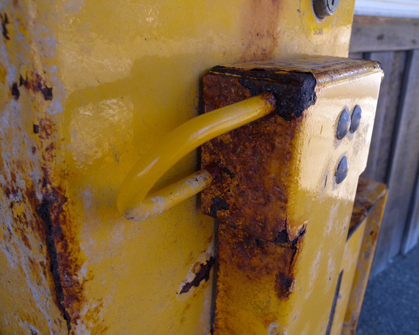 Bandon rust, Andrew D. Barron ©2/21/11