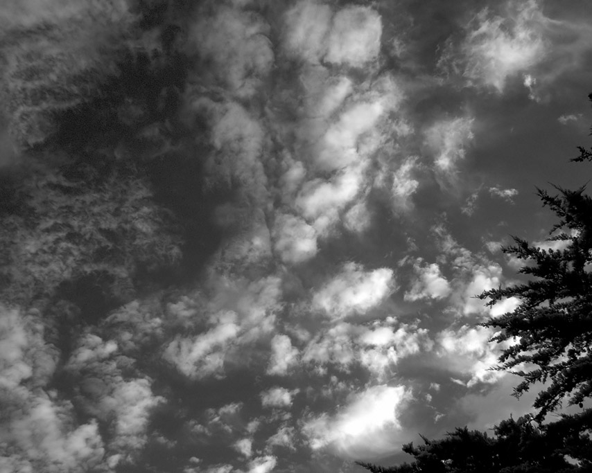 Sunrise, Andrew D. Barron ©3/6/11