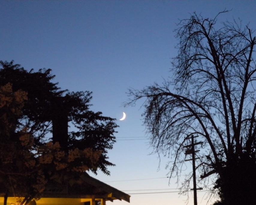 Crescent moon, Reno, NV, Andrew D. Barron©7/3/11
