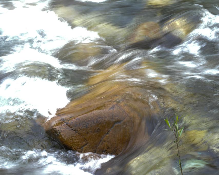 Castle creek, Castella, CA, Andrew D. Barron©7/18/11