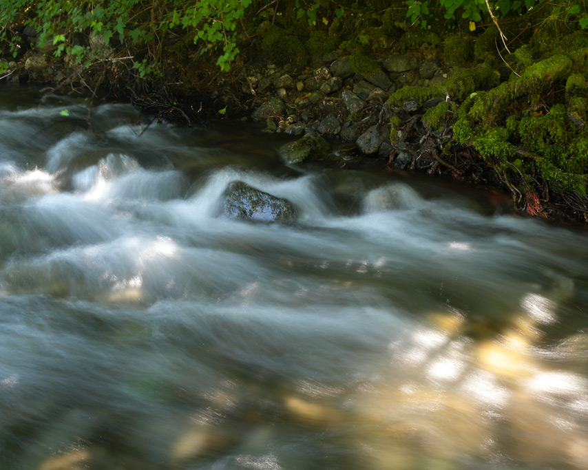 Hunter Creek flows by, Andrew D. Barron©7/22/11