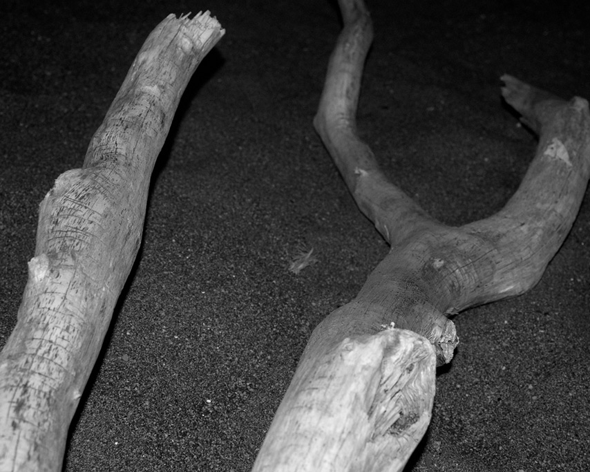 Infrared flash photography: driftwood, Andrew D. Barron©7/24/11
