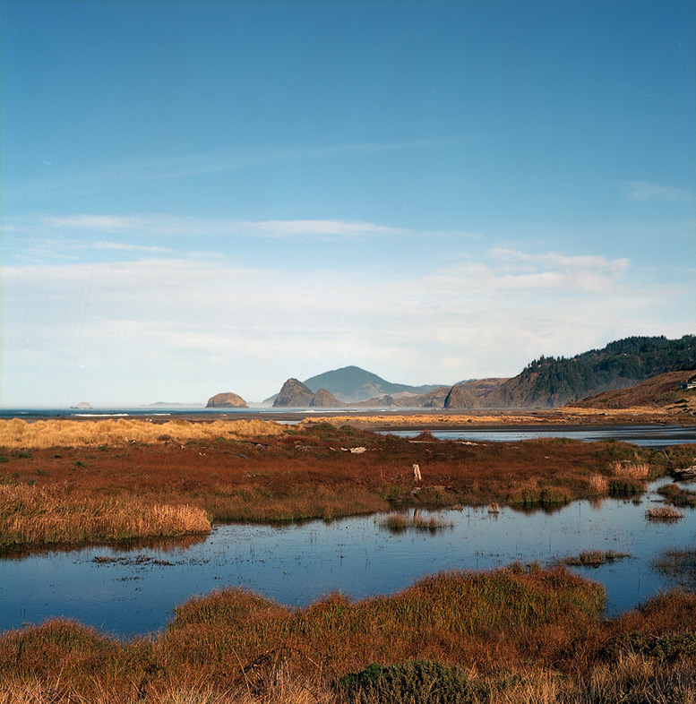 Euchre creek marsh, Ophir, OR, Andrew D. Barron©12/29/11 [Hasselblad 500c/m]]