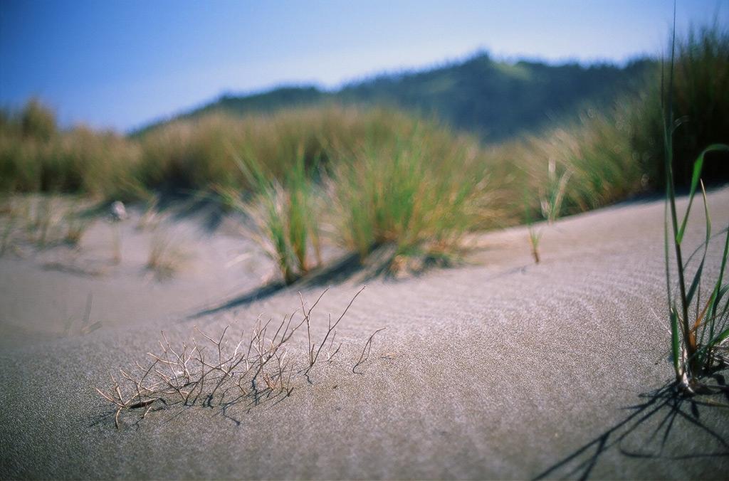 Ophir beach, Andrew D. Barron ©5/7/12
