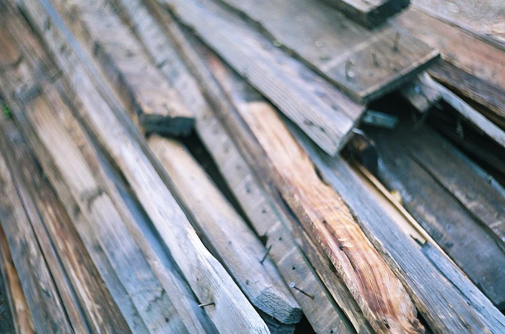 Cedar fence, Andrew D. Barron ©6/x/12