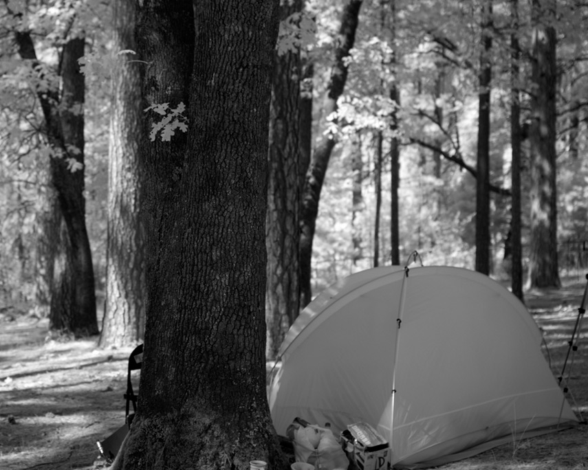 Grass Valley camp, Andrew D. Barron ©6/x/12