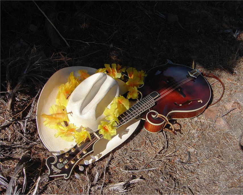 Bluegrass & luau, Andrew D. Barron©8/26/12 [Sony DSC-H1:1182]